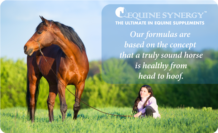 HEAD TO HOOF™ FORMULA